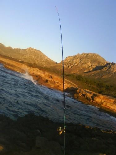 Pescando gamusinos