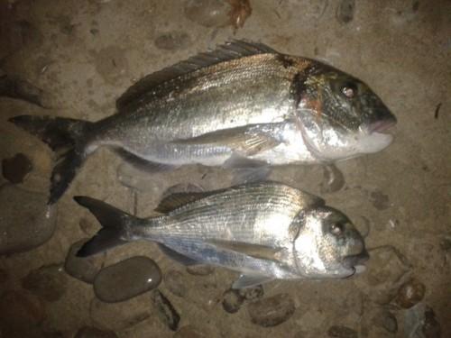 La kilera tiene secuelas de un pesca-sub